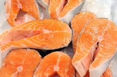 Fresh Salmon Fillet Stock Photography
