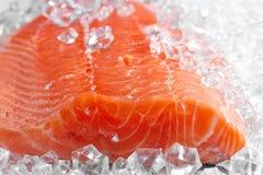 Fresh salmon fillet Royalty Free Stock Photos
