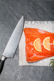 Fresh salmon fillet with aromatic herbs, spices Royalty Free Stock Photos