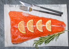 Fresh salmon fillet with aromatic herbs, spices Stock Images