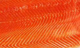 Fresh salmon fillet royalty free stock image