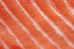 Fresh salmon fillet close up. Fresh salmon fillet salted with coarse sea salt close up Royalty Free Stock Photography