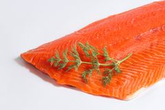 Fresh Salmon Fillet Close Up on White Background with Dill Royalty Free Stock Image
