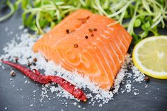 Fresh salmon fillet on dark background / Close up of raw salmon fish seafood with lemon herbs spices stock photo