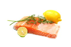 Fresh salmon fillet with herbs. Fresh salmon fillet with herbs and spices on a white background Royalty Free Stock Photography