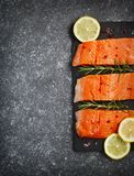Fresh salmon fillet with herbs and spices. Top view, copy space Royalty Free Stock Photo