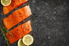 Fresh salmon fillet with herbs and spices. Top view, copy space Stock Photos