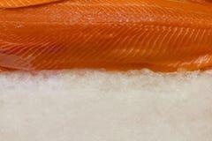 Salmon fillet on ice. Fresh salmon fillet on ice Royalty Free Stock Image