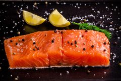Fresh salmon fillet with lemon, peppr and sea salt. Fresh salmon fillet with lemon, pepper and sea salt on dark background Stock Images
