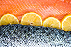Fresh Salmon Fillet. With Slices of Lemon on White Background Royalty Free Stock Photos