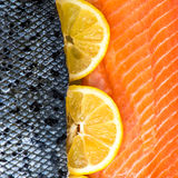 Fresh Salmon Fillet. With Slices of Lemon on White Background Royalty Free Stock Images