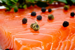 Fresh salmon fillet  with pepper and herbs Stock Images