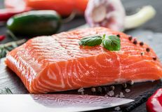 Fresh salmon fillets on black cutting board with herbs and spice. S Royalty Free Stock Photos