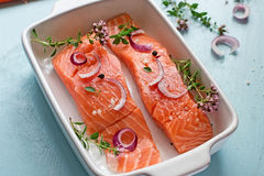 Fresh salmon fillets with onions, pepper and herbs Royalty Free Stock Photos