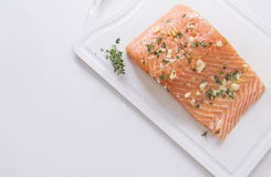 Fresh Salmon Fish, Cooking Seafood. On white background Royalty Free Stock Images