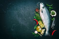 Fresh salmon fish with seasoning on black stone. Background Stock Photos