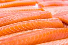 Fresh salmon. For sale in the market Stock Image
