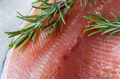 Salmon stock images