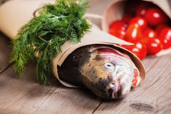 Fresh salmon with greenery and tomatoes Royalty Free Stock Images