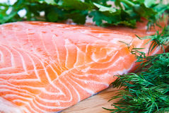 Fresh salmon with herbs. Fresh red fish with dill and parsley Royalty Free Stock Photography