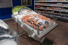 Fresh salmon on ice Royalty Free Stock Images