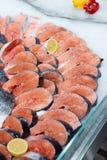 Fresh salmon on ice Royalty Free Stock Photos