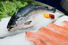 Fresh salmon on ice. In a supermarket Royalty Free Stock Image