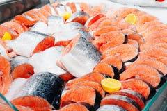 Fresh salmon on ice, toned Royalty Free Stock Images