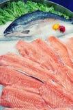 Fresh salmon on ice, toned Royalty Free Stock Photography