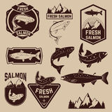 Fresh salmon labels set Stock Images