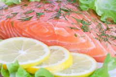 Fresh salmon with lemon and herbs. Fresh fish with lemon, dill and lettuce Stock Photos