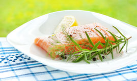 Fresh salmon with lemon, rosemary and dill on whit Royalty Free Stock Photography