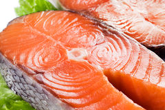 Fresh salmon. Macro Stock Image