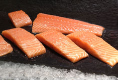 Fresh salmon in market. Close up fresh salmon for sell in market royalty free stock photography