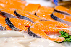 Fresh salmon on market display. Fresh salmon on cooled market display royalty free stock photos