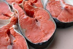 Fresh salmon in milk Stock Image