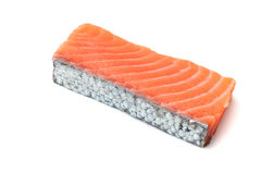Fresh salmon piece Stock Images