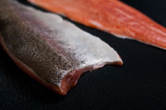 Fresh salmon pieces on dark black background royalty free stock photos