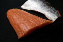 Fresh salmon pieces on dark black background stock image