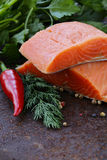 Fresh salmon (red fish) fillet with herbs, spices and vegetables. Healthy food Stock Image