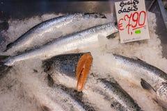 Fresh salmon in retail fridge Royalty Free Stock Photos