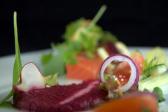 Fresh Salmon with Salad. On the white plate royalty free stock image