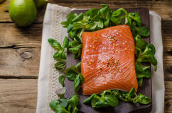 Fresh salmon with salad Stock Images