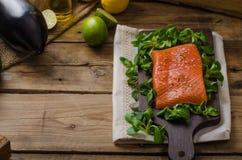 Fresh salmon with salad Royalty Free Stock Image