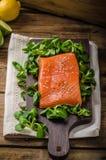 Fresh salmon with salad Stock Photography