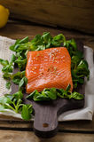 Fresh salmon with salad Stock Image