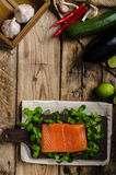 Fresh salmon with salad Royalty Free Stock Images