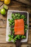 Fresh salmon with salad Royalty Free Stock Photos