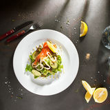 Fresh Salmon Salad Stock Photography