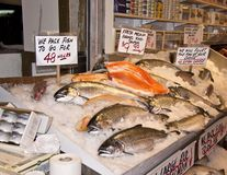 Fresh Salmon. For sale at a fish market Stock Photo